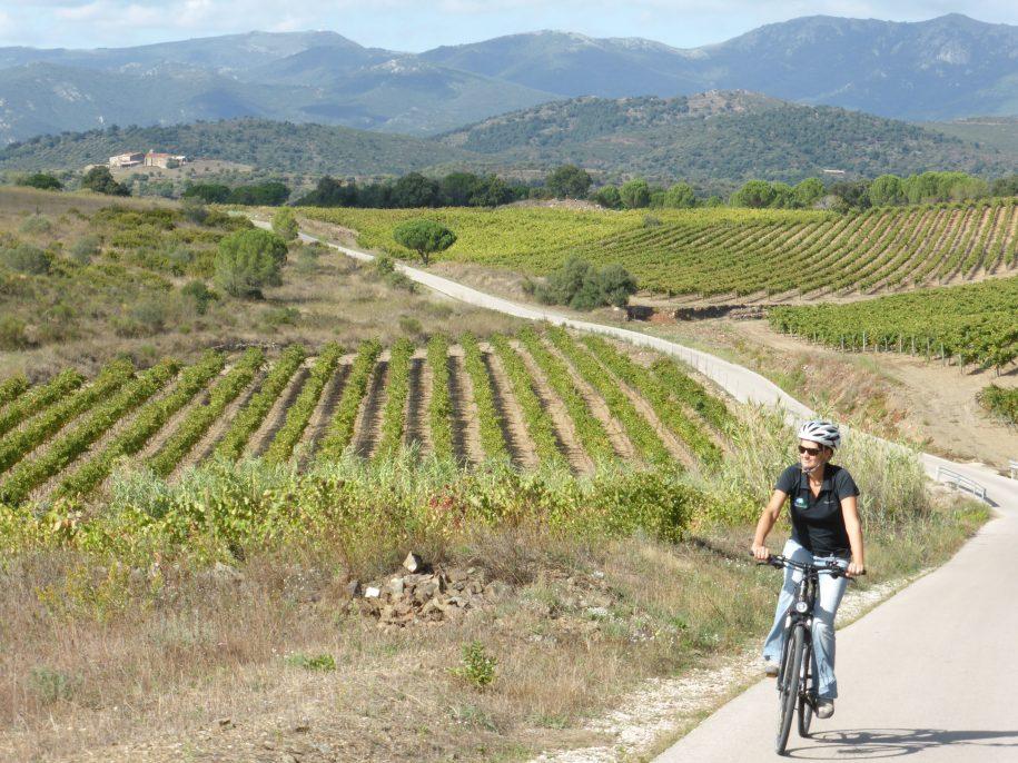 Pedalant al mig de les vinyes a la zona de l'Empordà