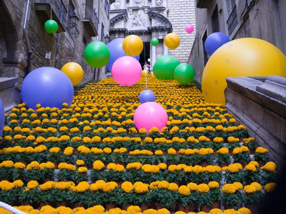 Fotos de Temps de Flors