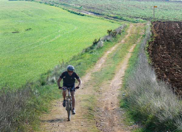 Mountain bike tour along the fields of the Emporda