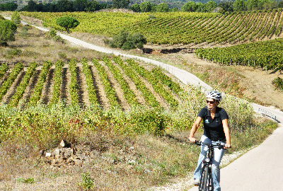Cycling between the wineyards of the Emporda