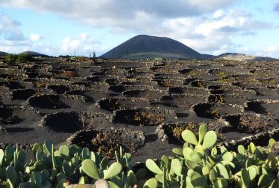 Canary island of Lanzarote